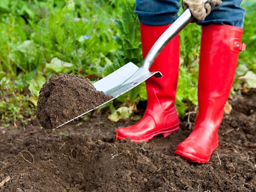 Đời có 3 loại: Người trồng cây, người chủ vườn và người thiết kế