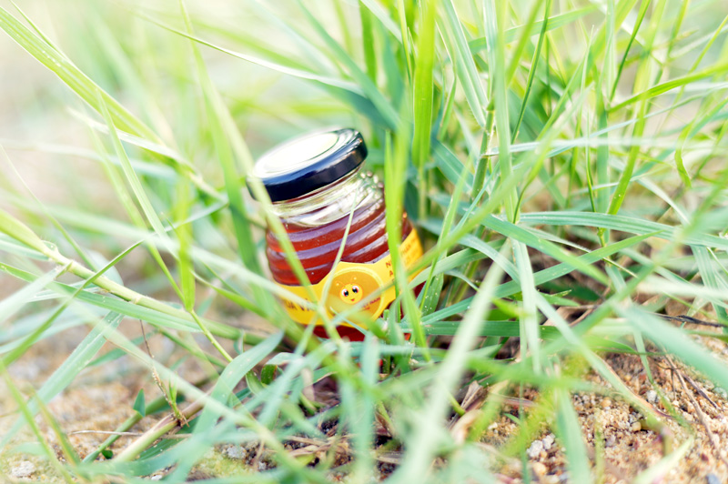 Mật Ong Hoa Vải - Litchi Honey